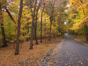 Royalty Free Photo of an Autumn Landscape