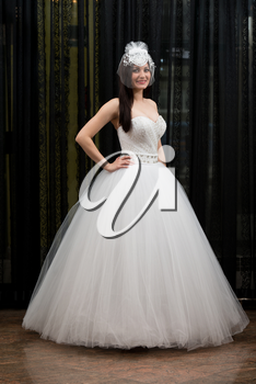 Beautiful Young Bride In Wedding Gown