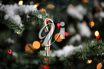 Candy cane ornament hanging in artificial Christmas tree with glowing lights and snow in background