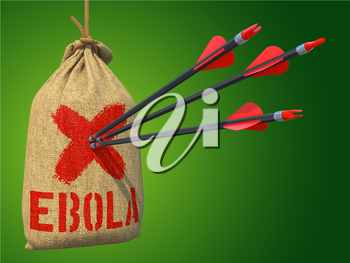 Ebola - Three Arrows Hit in Red Target on a Hanging Sack on Green Background.