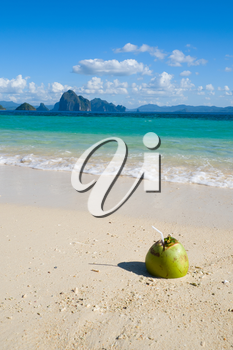 Green coconut on tropical white sand beach, Philippines