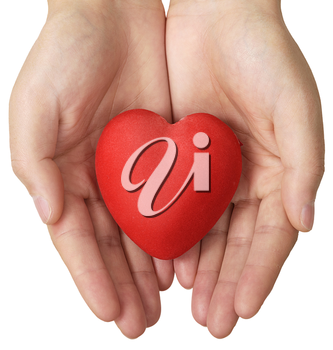 Health insurance or love concept, heart in hands