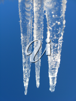 icicles on a background of the blue sky