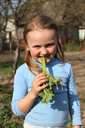 little beautiful girl chewing young sprout of rhubard in the spring