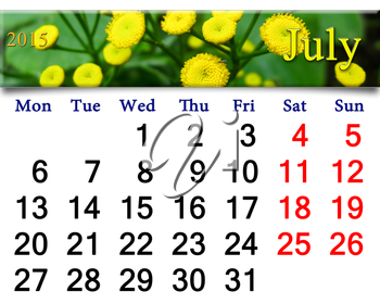 calendar for July of 2015 with fragment of yellow camomiles on the green
