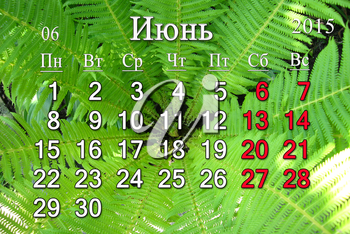 calendar for 2015 June year in Russian on the background of green fern