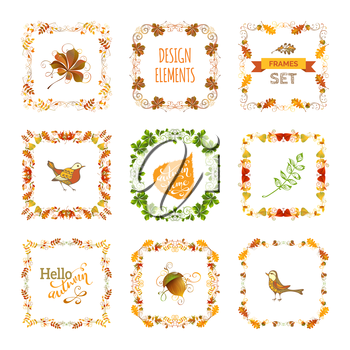 Frames, corners, page decorations and dividers, swirls and flourishes isolated on white background. Oak, rowan, maple, chestnut, elm leaves and acorn.