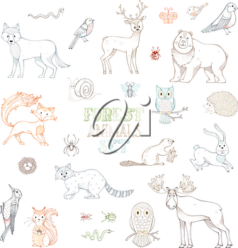 Linear animals isolated on white background. Moose, bear, fox, wolf, deer, owl, hare, squirrel, raccoon, hedgehog and other mammals and birds.