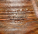 abstract texture of a   brown  antique wooden     old door