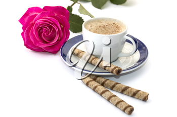 rose and cappuccino on a saucer with a blue border