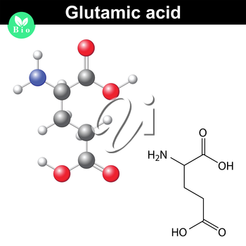 Glutamic acid - main amino acid and neurotransmitter, chemical structure and molecular formula, 2d and 3d illustration, vector, eps 8