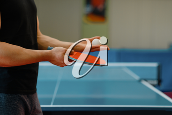 Male person hands with ping pong racket and ball, workout indoors. Man in sportswear standing at the table with net, training in table-tennis club