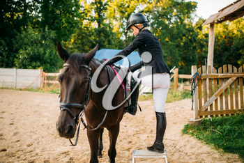 Female jockey and brown stallion, horseback riding. Equestrian sport, young woman and beautiful horse