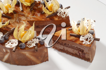 Chocolate fudge cake decorated with physalis fruit and chocolate curls