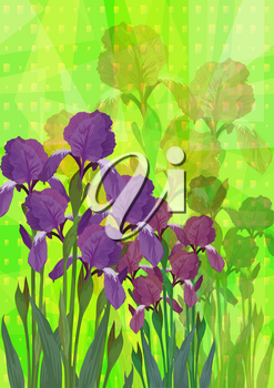 Flowers Iris on Abstract Background for Holiday Design. Vector