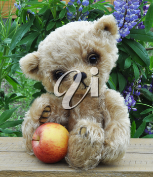 Handmade, the sewed toy: teddy bear Lucky with an apple among flowers