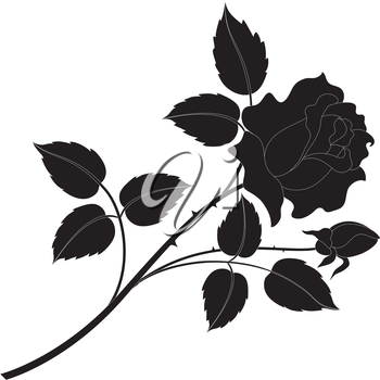 Flower rose, petals and leaves black silhouettes isolated on white background. Vector