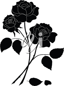 Flowers, rose bouquet, love symbol, floral gift, silhouette. Vector