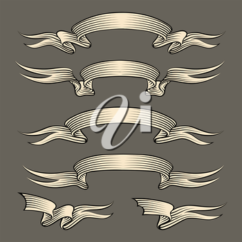Set of ribbons drawn in vintage engraving style