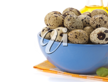 quail egg in bowl isolated on white background