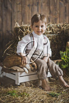 Portrait of little boy playing with a rabbit.