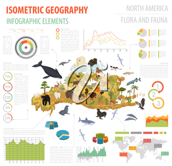 Isometric 3d North America flora and fauna map elements. Animals, birds and sea life. Build your own geography infographics collection. Vector illustration