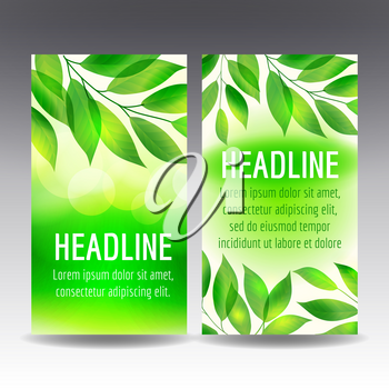 Vector flyer templates with green leaves and light