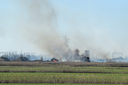 Fire on irrigation canals. Burning dry grass and cane fields in irrigation system. Burning debris and rubber.