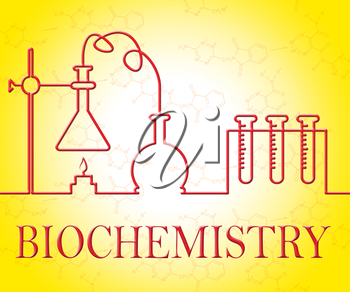 Biochemistry Research Showing Test Examination And Experiment