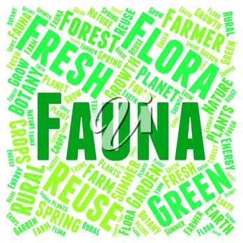 Fauna Word Meaning Animal Life And Zoology