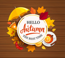 Hello Autumn lettering in gold frame on wooden background with umbrella, pumpkin pie, tea and autumn leaves. Vector illustration.