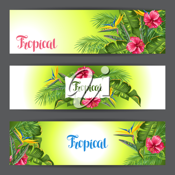 Banners with tropical leaves and flowers. Palms branches, bird of paradise flower, hibiscus.
