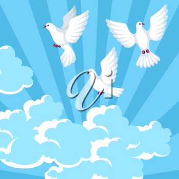 Background with white doves. Beautiful pigeons faith and love symbol.