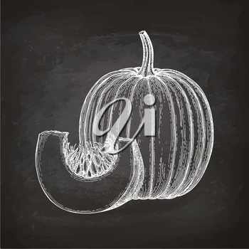 Chalk sketch of pumpkin on blackboard background. Hand drawn vector illustration. Retro style.