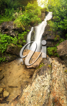 Waterfall in summer canyon. Natural landscape