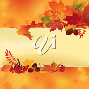 Autumn frame. Fall leaves and berries. Nature floral background. Floral seasonal leaf wallpaper