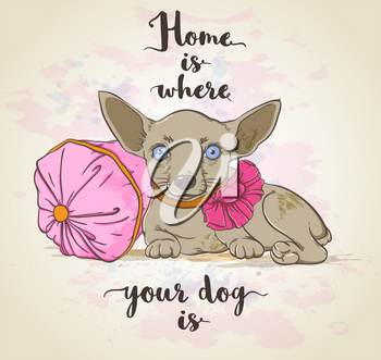Vector background with small dog on a pillow and lettering.
