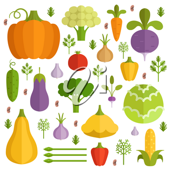 Different vegetables in cartoon style. Vector icons set. Vegetarian organic carrot and pepper illustration