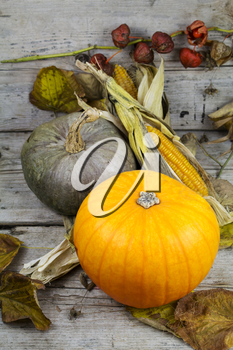 Happy Thanksgiving Day, Decoration on a wooden table with Pumpkins, Corncob and autumn leaves