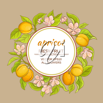 apricot branches vector frame on color background