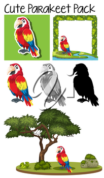 A pack of cute parrot illustration