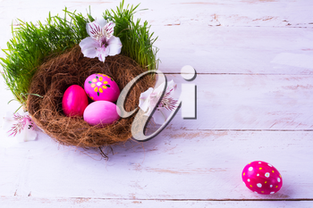 pink Easter eggs in a nest with white flowers in the green fresh grass on the white wooden background. Easter background. Easter symbol. Easter hunt. Copy space