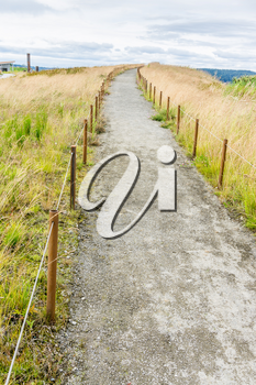 A dirt path leads up a small hill at Dune Peninsula Park in Tacoma, Washington.