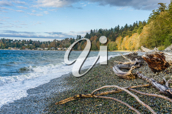 An autumn view of the shoreline at Lincoln Park in West Seattle, Washington.
